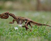 Dinosaur UK
